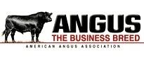 Anguslogo1