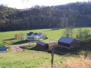 Shaun's farm