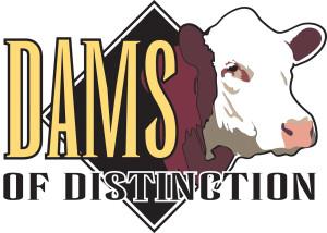 DamsofDistinction
